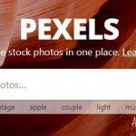 Kepo – Ini Dia Website Penyedia Foto Gratis Berkualitas Tinggi
